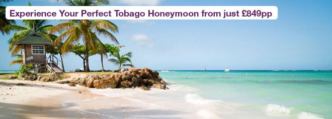 Discover Unspoilt Caribbean Beauty on the Island of Tobago